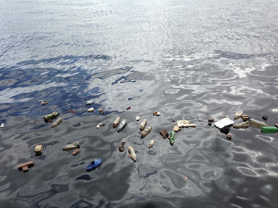 К середине этого века пластика в океане может стать больше, чем рыбы