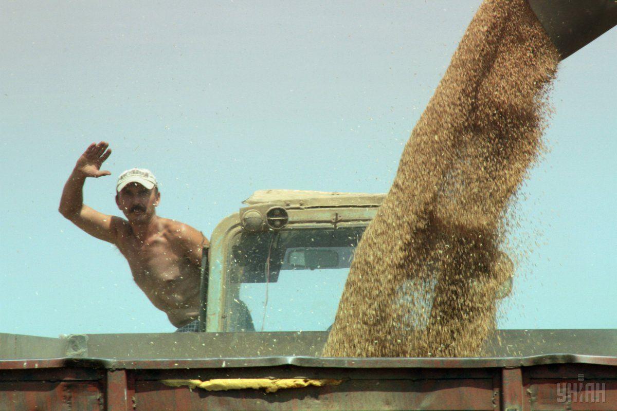 Средняя зарплата украинских аграриев выросла на 25%