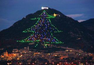 В Италии зажглась самая огромная в мире елка