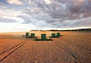 Украина входит в тройку крупнейших экспортеров агропродукции в ЕС
