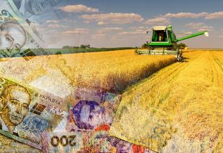 В Украине более 60% аграрных расписок выданы в этом году