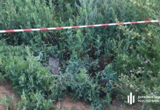 В Сумской области двое сотрудников СБУ напали на украинских пограничников